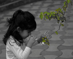 A_curious_child,_smelling_flower,_India